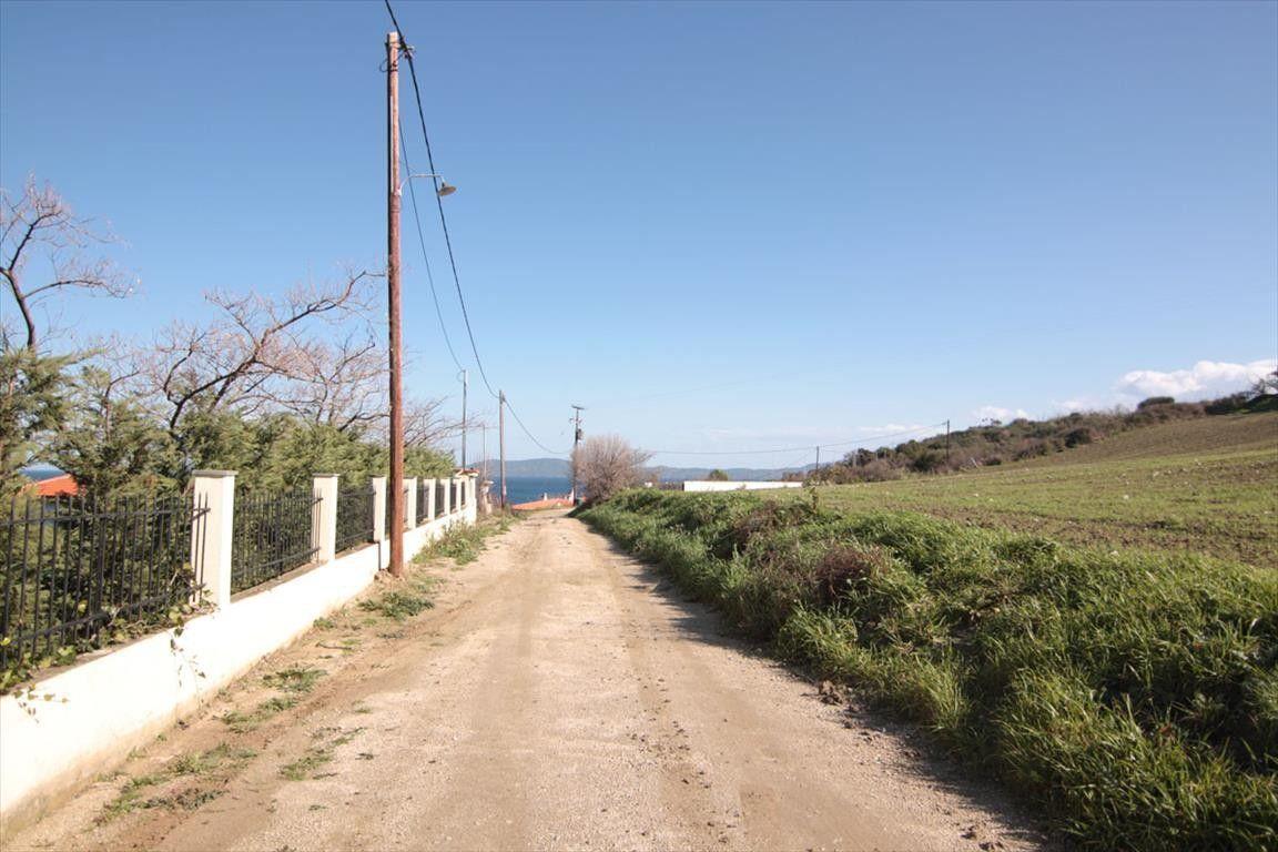 Земля Халкидики-Афон, Греция, 4200 сот. - фото 1