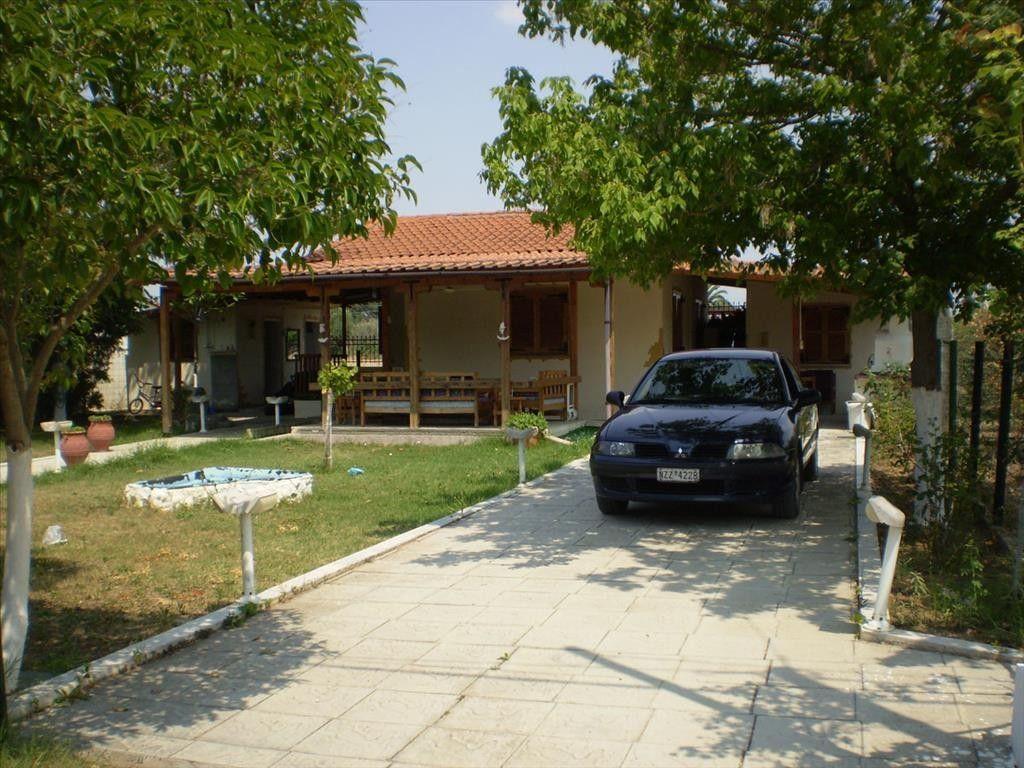 Коттедж Халкидики-Другое, Греция, 70 м2 - фото 1