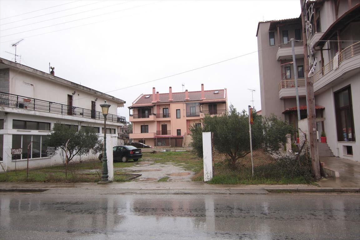 Земля Халкидики-Афон, Греция, 398 сот. - фото 1