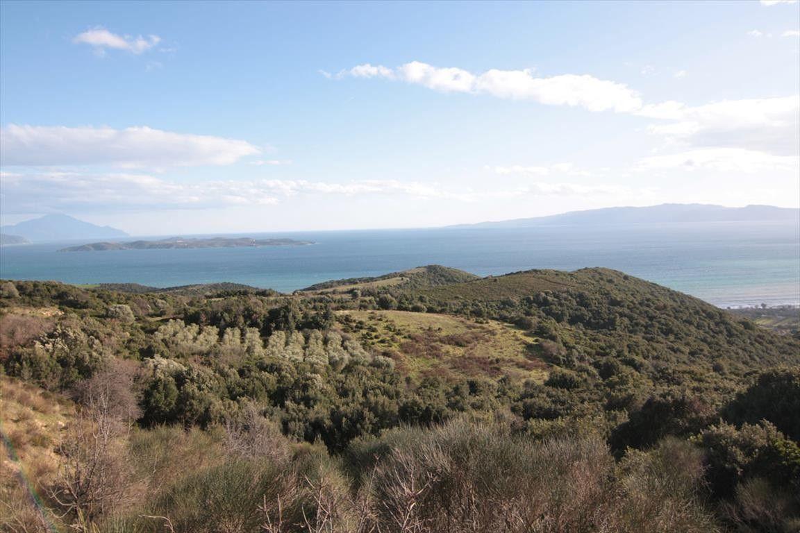 Земля Халкидики-Афон, Греция, 12000 сот. - фото 1