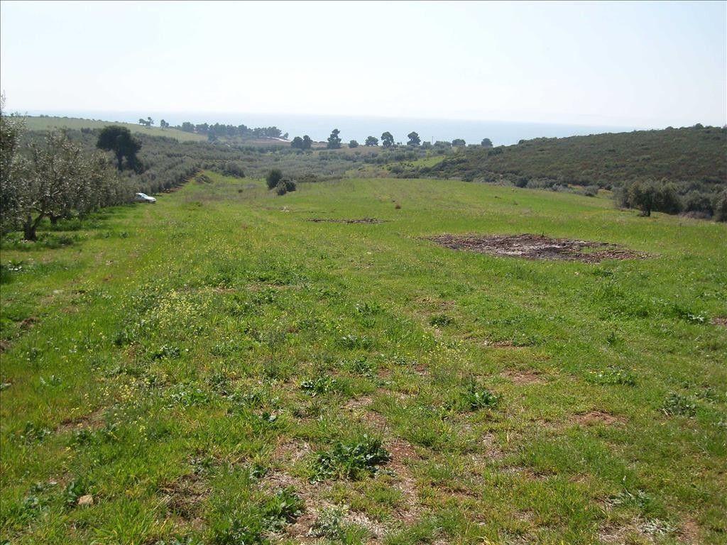 Земля Халкидики-Ситония, Греция, 4500 сот. - фото 1