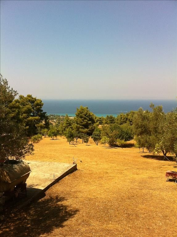 Земля Халкидики-Кассандра, Греция, 12200 сот. - фото 1