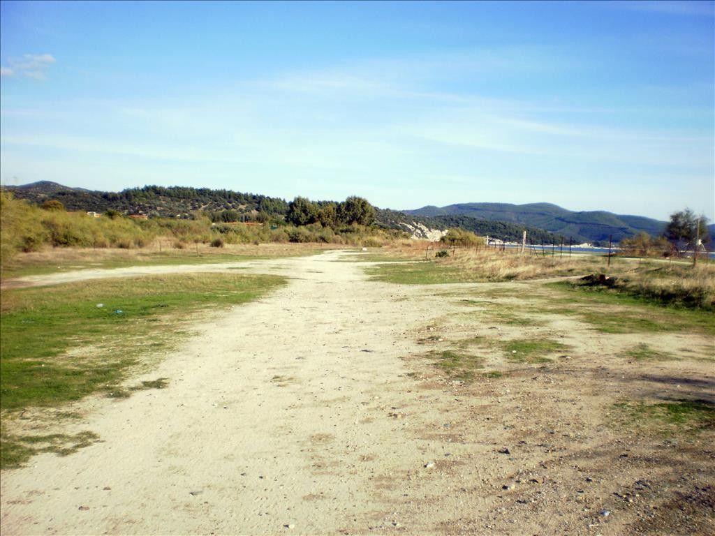 Земля Халкидики-Ситония, Греция, 130000 сот. - фото 1