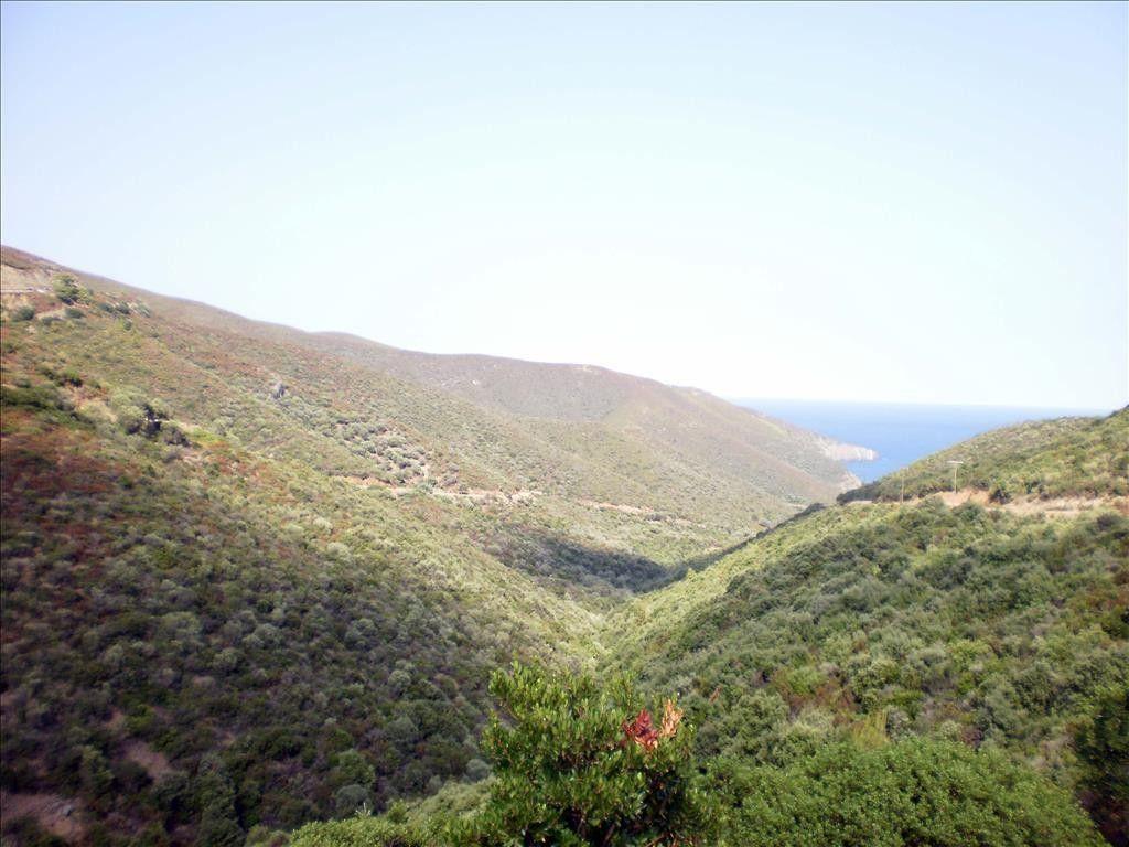 Земля Халкидики-Ситония, Греция, 250000 сот. - фото 1