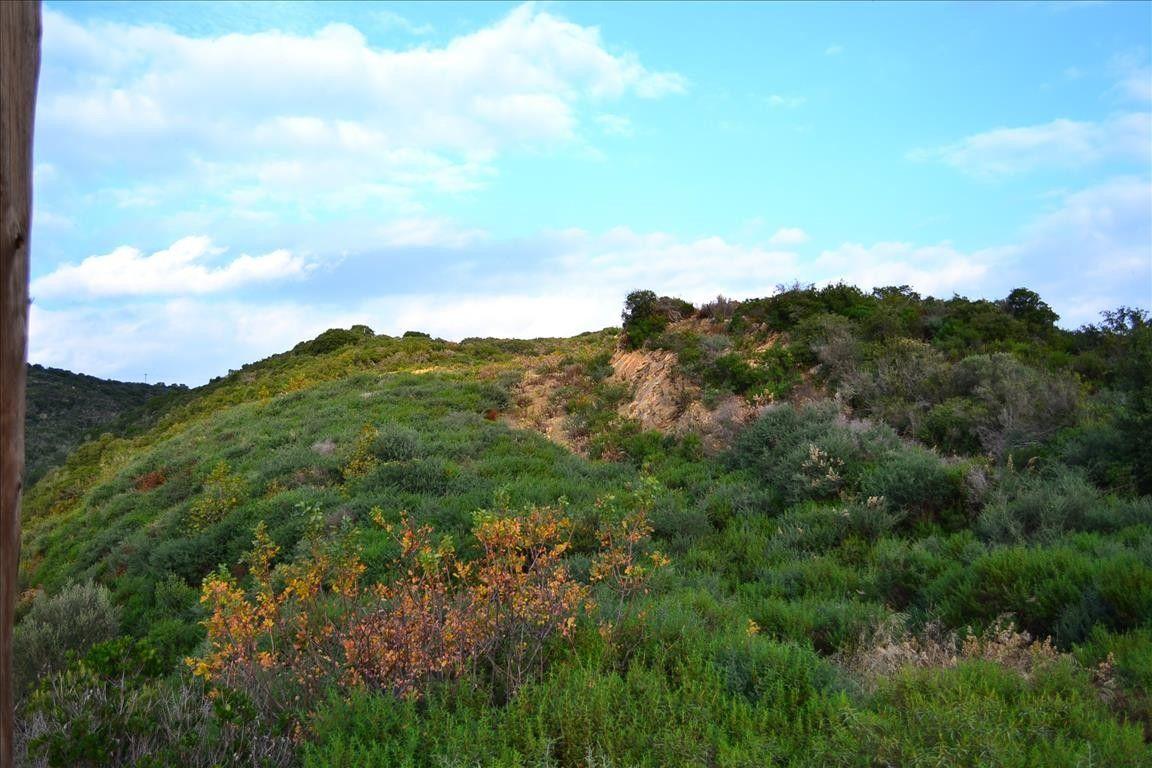 Земля Халкидики-Афон, Греция, 5250 сот. - фото 1