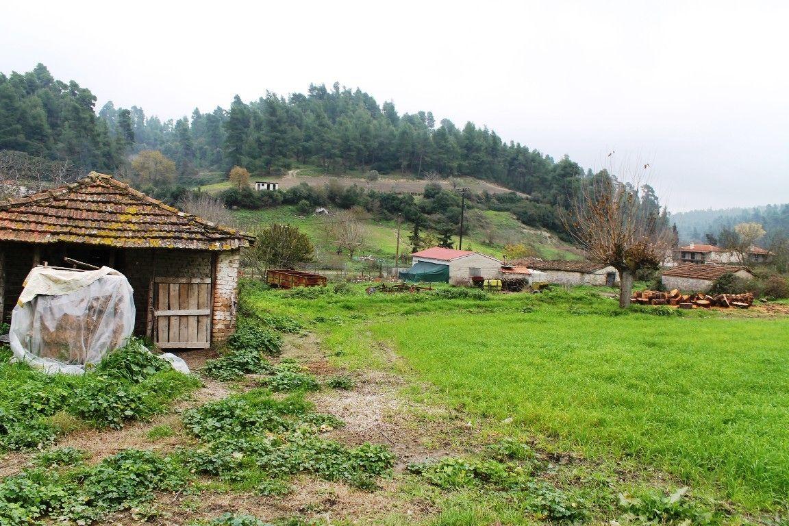 Земля Халкидики-Кассандра, Греция, 930 сот. - фото 1