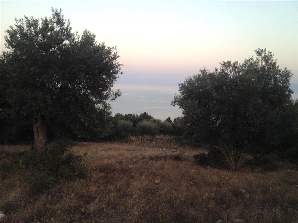 Земля Халкидики-Афон, Греция, 7070 сот. - фото 1
