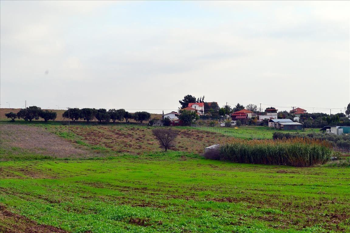 Земля Халкидики-Кассандра, Греция, 7554 сот. - фото 1