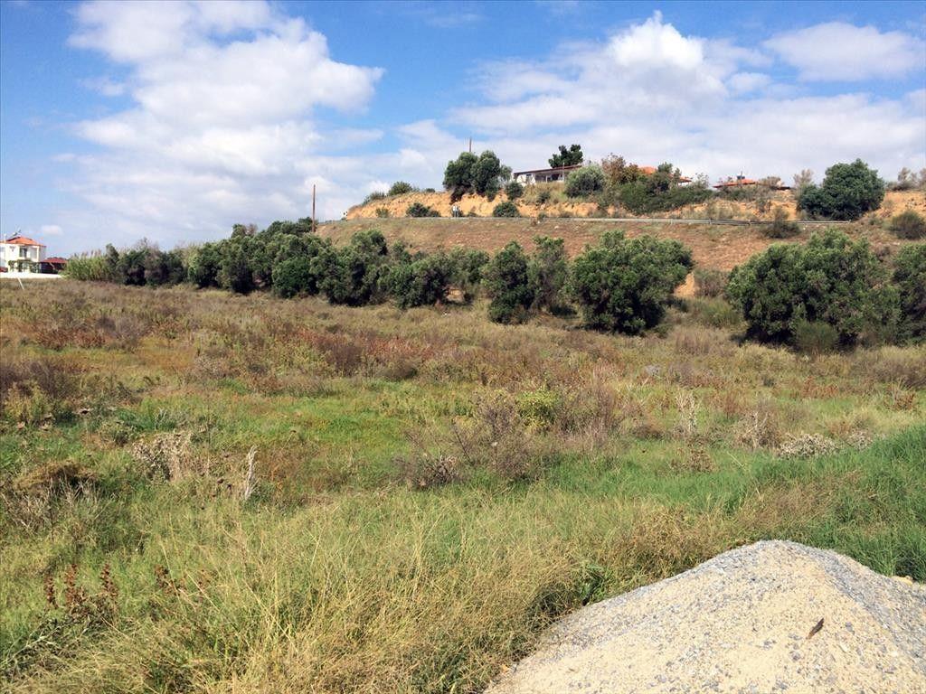 Земля Халкидики-Другое, Греция, 6822 сот. - фото 1