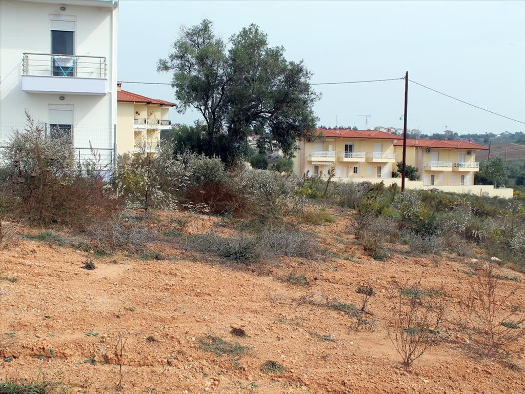 Земля Халкидики-Кассандра, Греция, 297 сот. - фото 1