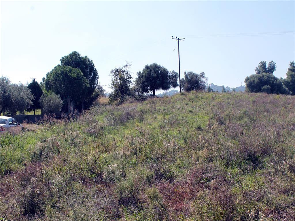 Земля Халкидики-Кассандра, Греция, 22500 сот. - фото 1