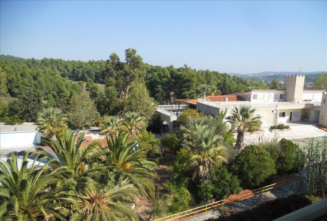 Отель, гостиница Халкидики-Кассандра, Греция, 5700 м2 - фото 1