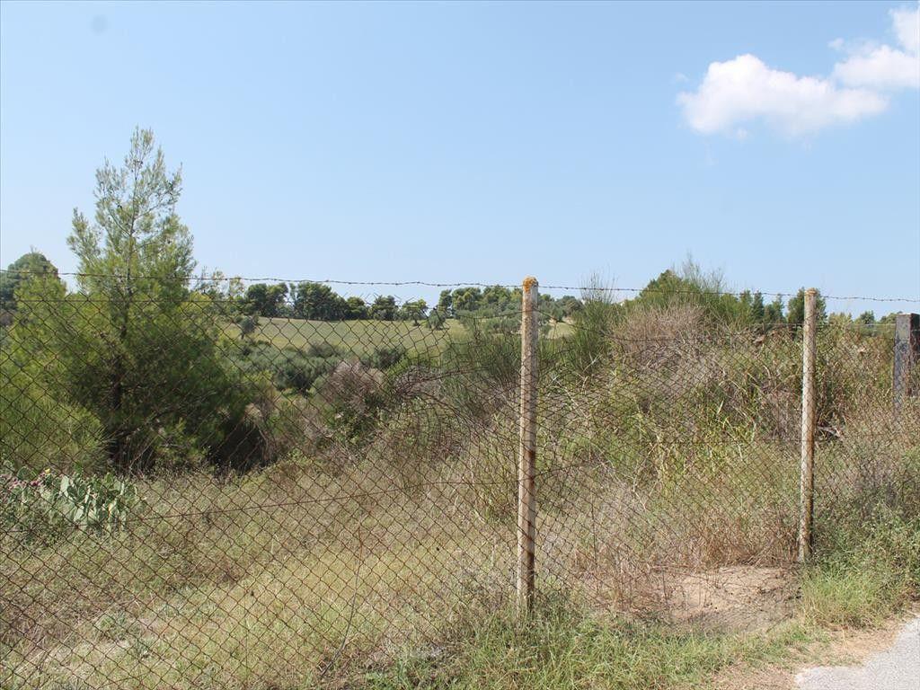 Земля Халкидики-Кассандра, Греция, 4025 сот. - фото 1