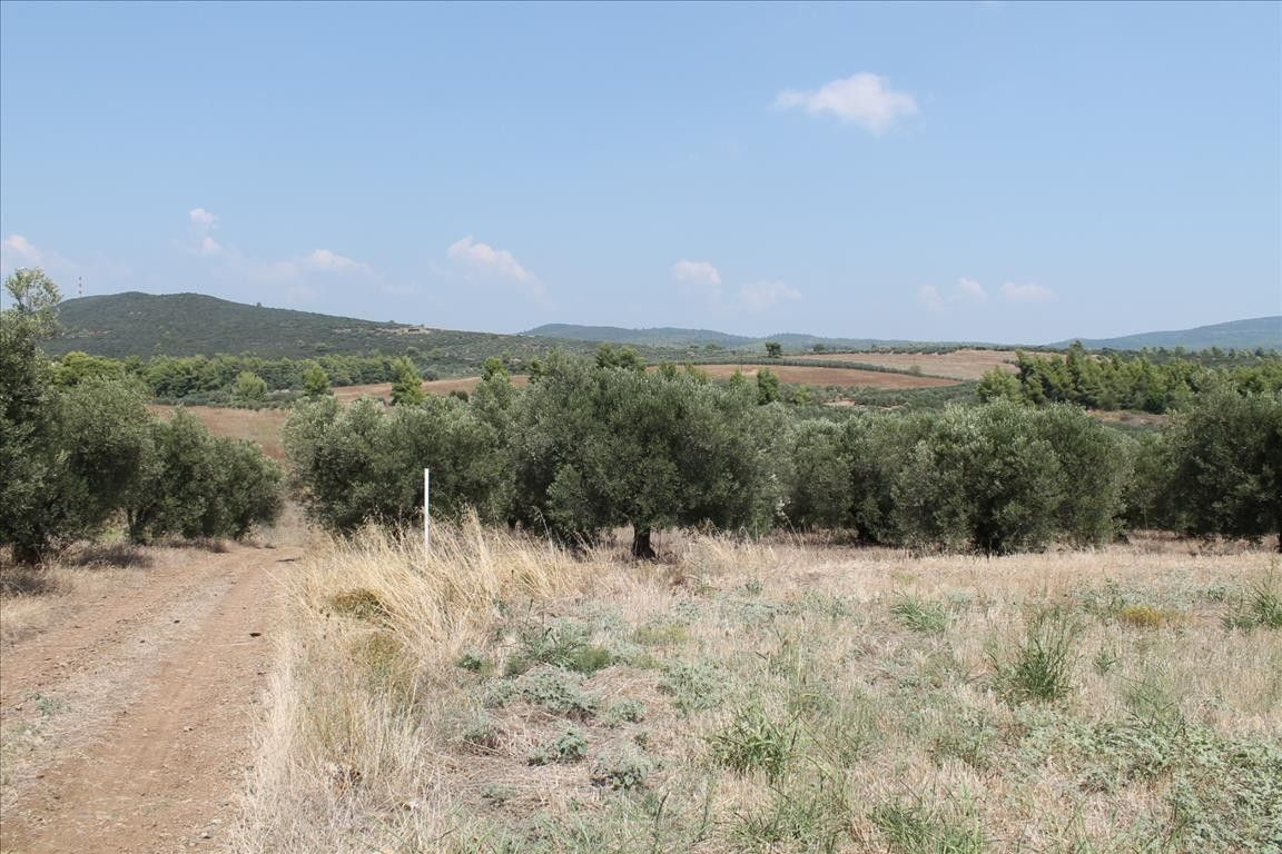 Земля Халкидики-Ситония, Греция, 6915 сот. - фото 1