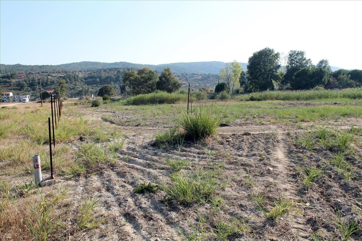 Земля Халкидики-Ситония, Греция, 4018 сот. - фото 1