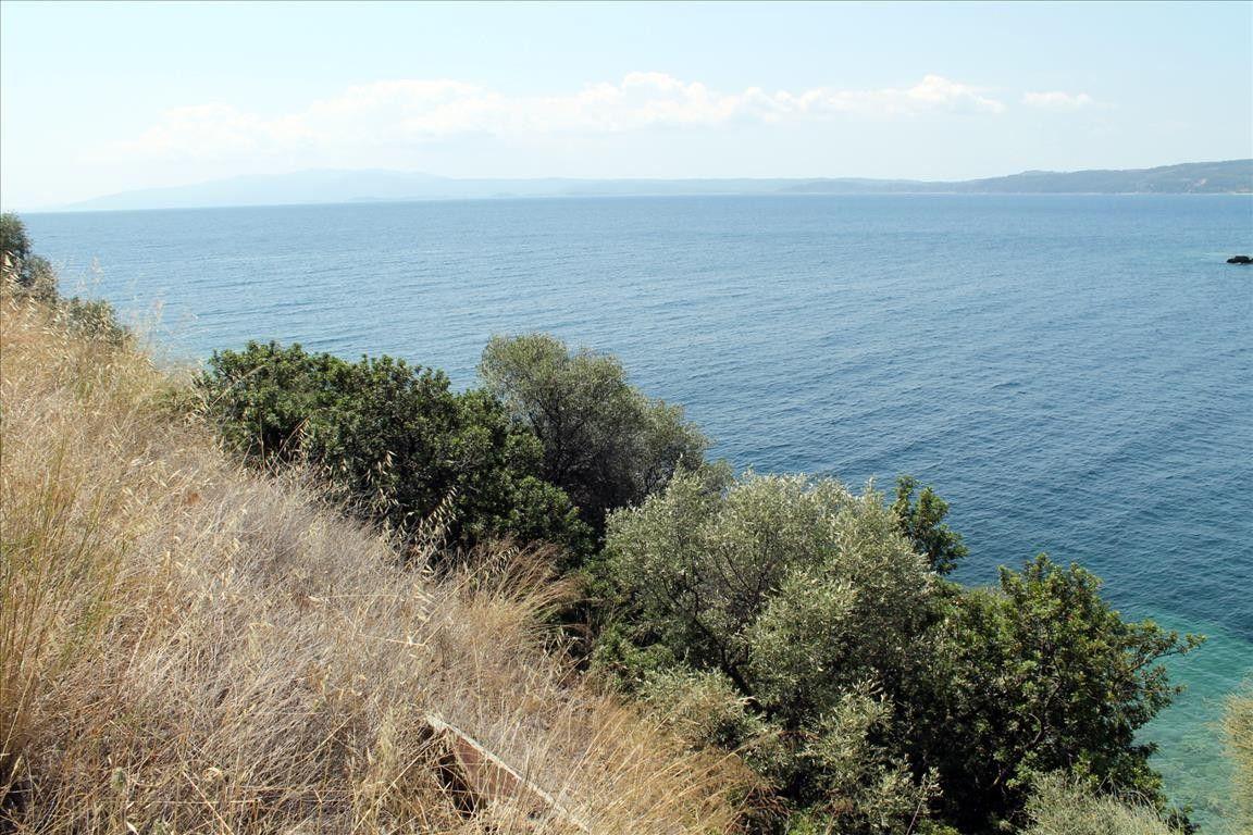 Земля Халкидики-Афон, Греция, 15000 сот. - фото 1