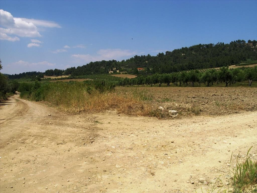Земля Халкидики-Кассандра, Греция, 4385 сот. - фото 1