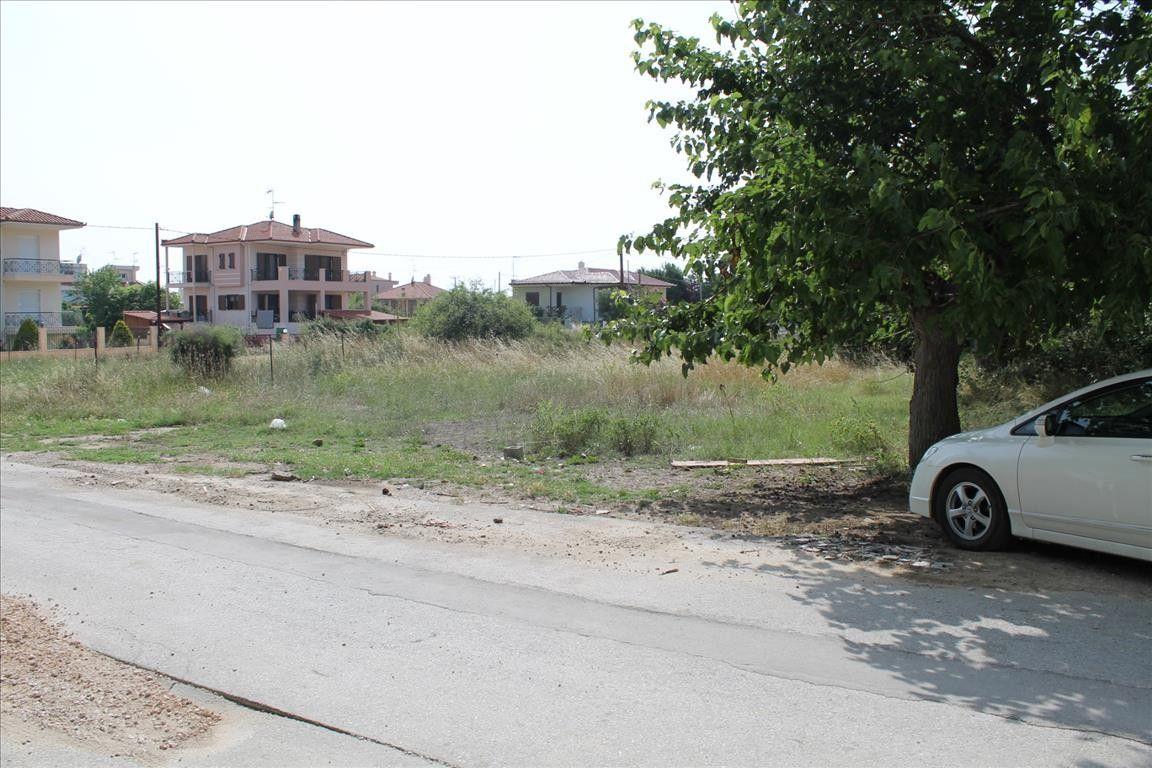 Земля Халкидики-Ситония, Греция, 742 сот. - фото 1