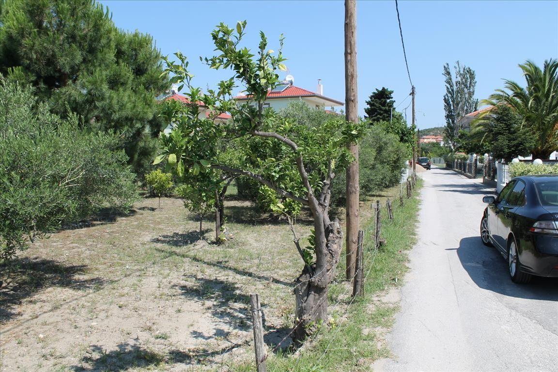 Земля Халкидики-Ситония, Греция, 1100 сот. - фото 1