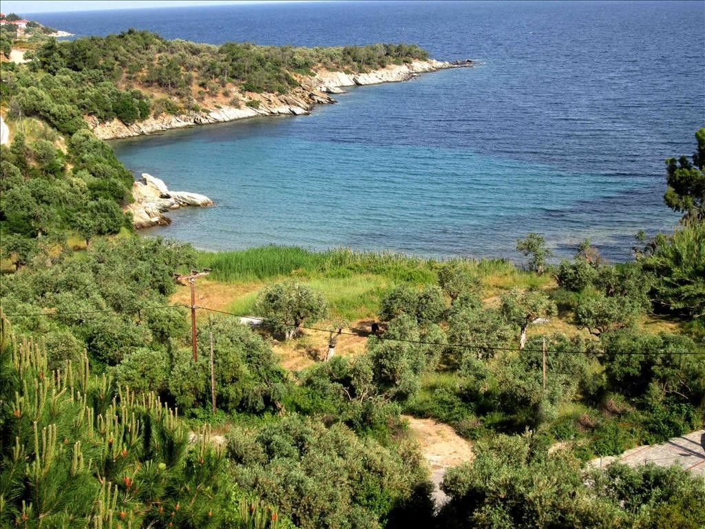 Коттедж Халкидики-Ситония, Греция, 180 м2 - фото 1
