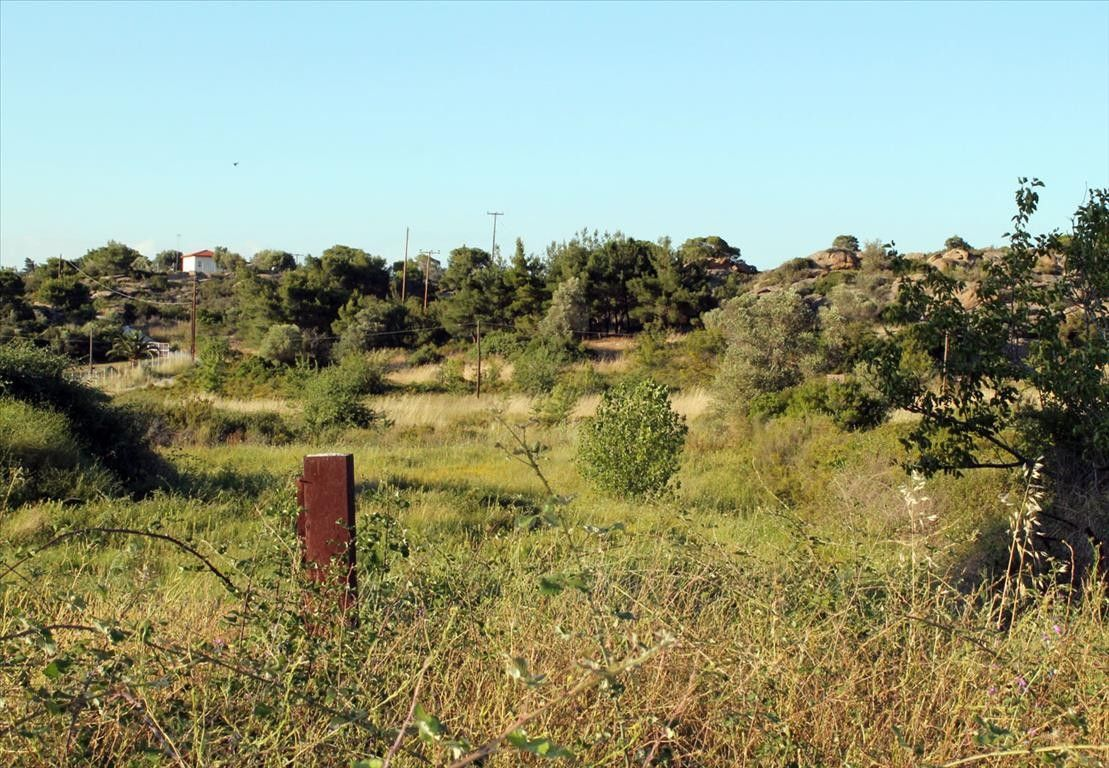 Земля Халкидики-Ситония, Греция, 3391 сот. - фото 1