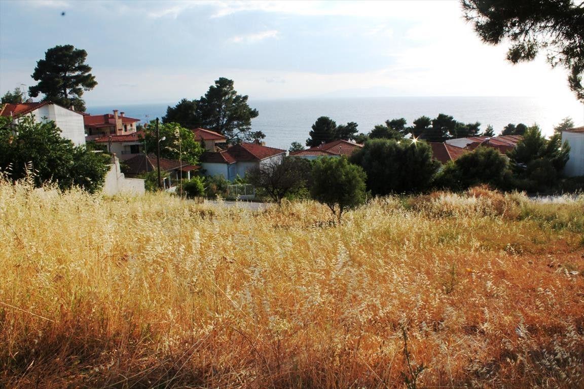 Земля Халкидики-Кассандра, Греция, 1270 сот. - фото 1