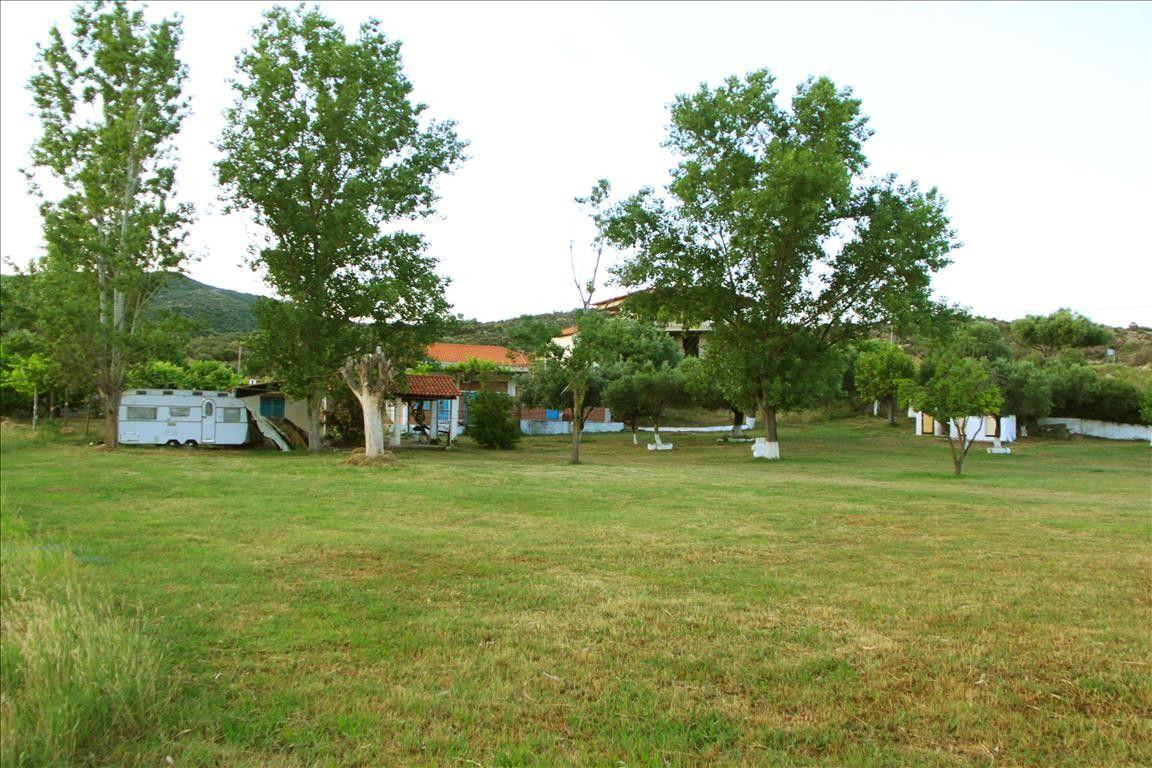 Земля Халкидики-Ситония, Греция, 5600 сот. - фото 1
