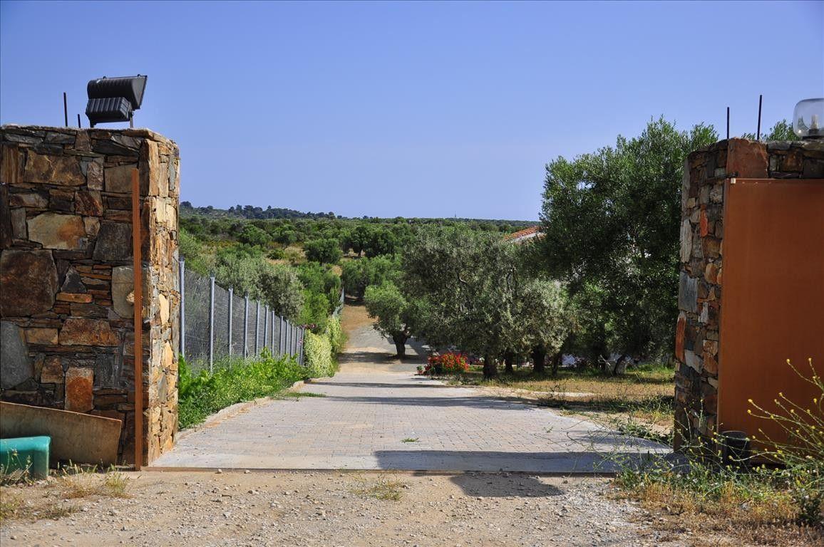Отель, гостиница Халкидики-Ситония, Греция, 550 м2 - фото 1