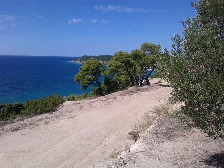 Земля Халкидики-Кассандра, Греция, 11875 сот. - фото 1