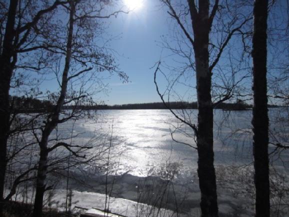 Земля в Савонлинне, Финляндия, 48520 м2 - фото 6