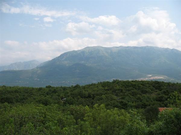 Земля на полуострове Луштица, Черногория, 12342 м2 - фото 1