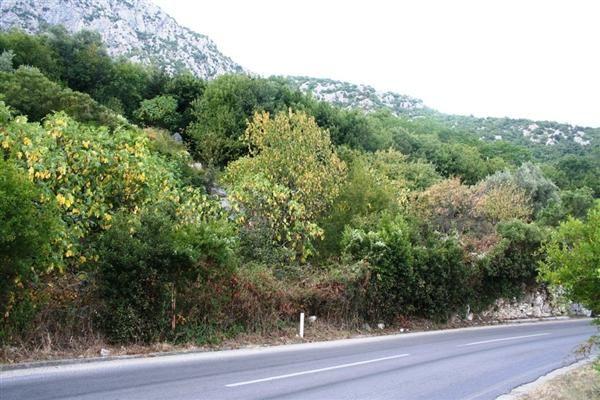 Земля в Которе, Черногория, 1350 м2 - фото 1
