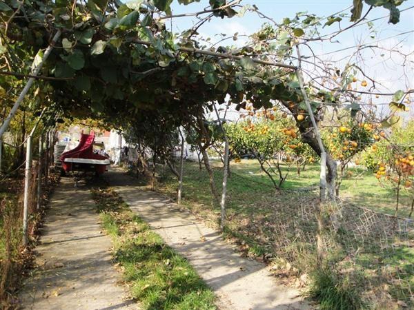 Дом в Баре, Черногория, 778 м2 - фото 1