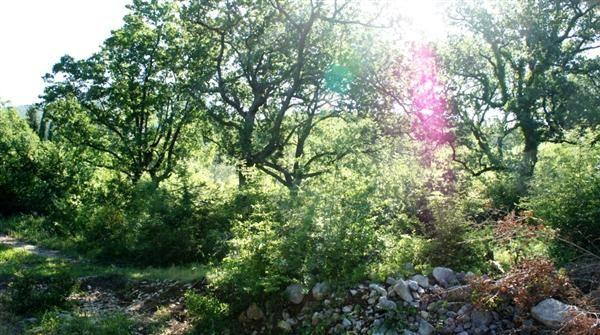 Земля в Сутоморе, Черногория, 5908 м2 - фото 1