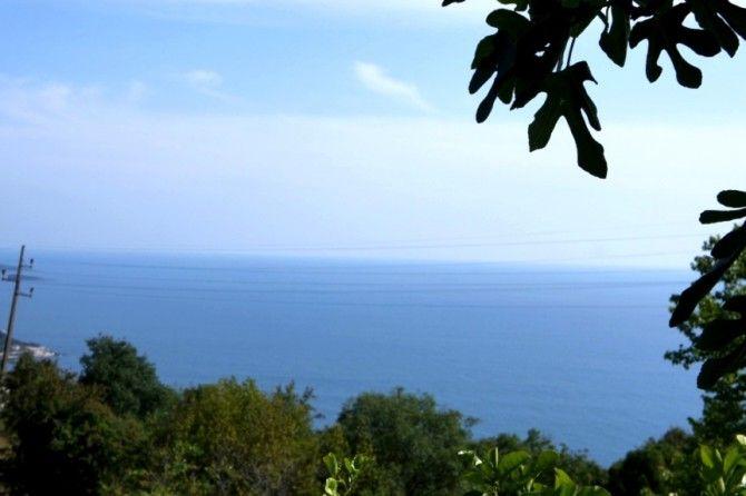 Земля в Добра Воде, Черногория, 742 м2 - фото 1