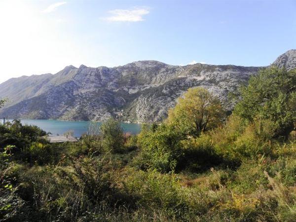 Земля в Рисане, Черногория, 3619 м2 - фото 1