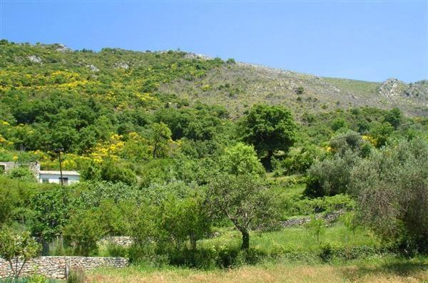 Земля в Баре, Черногория, 30000 м2 - фото 1