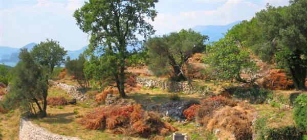 Земля в Режевичах, Черногория, 5165 м2 - фото 1