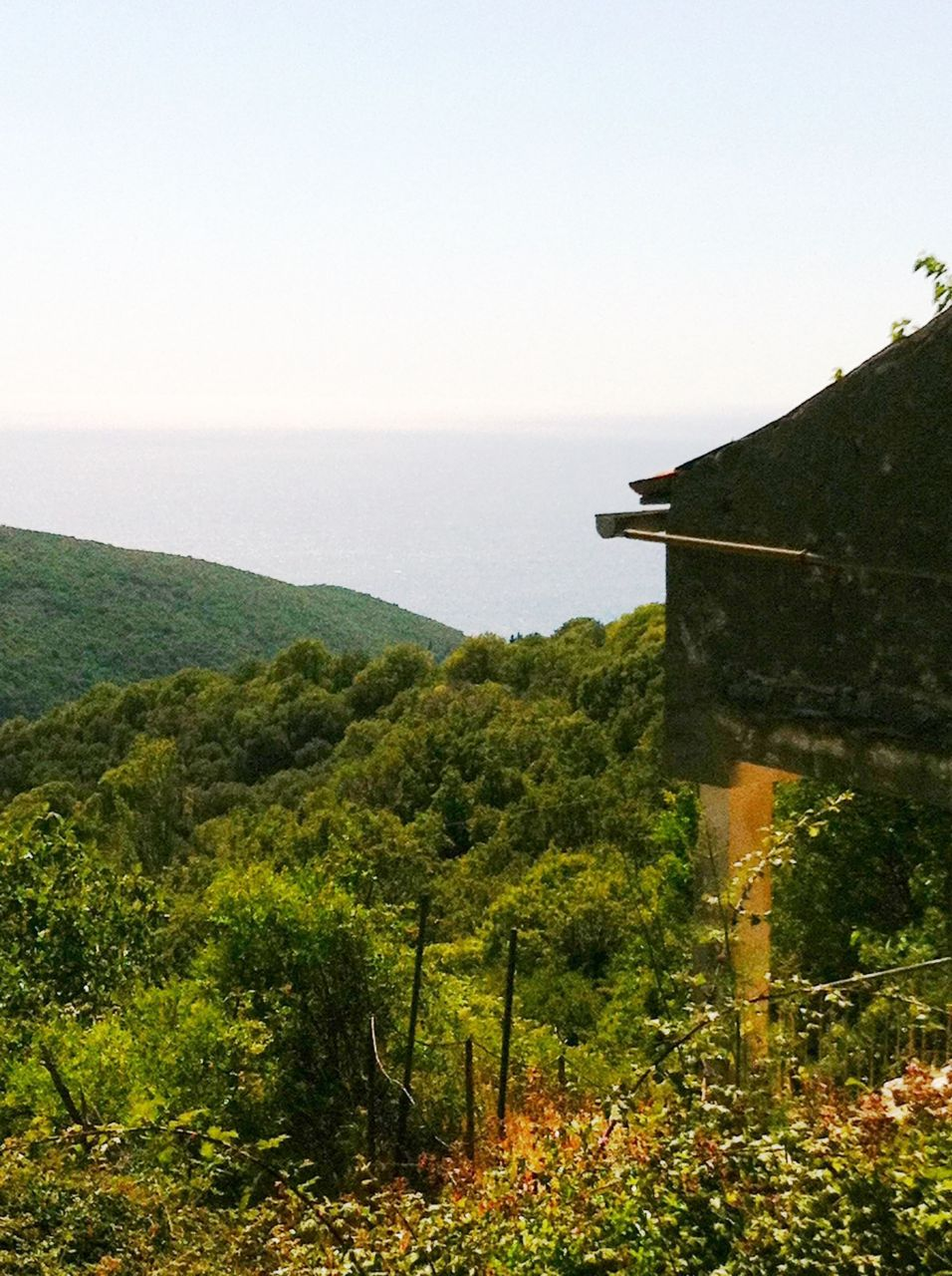 Земля на Круче, Черногория, 4349 м2 - фото 1