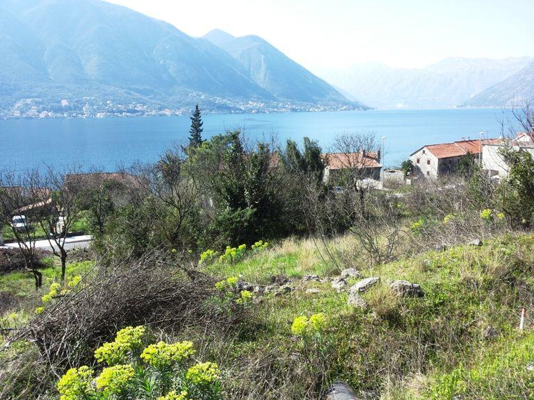 Земля в Доброте, Черногория, 4800 м2 - фото 1