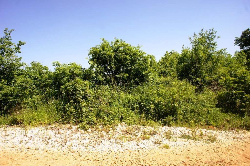Земля в Улцине, Черногория, 30878 м2 - фото 1