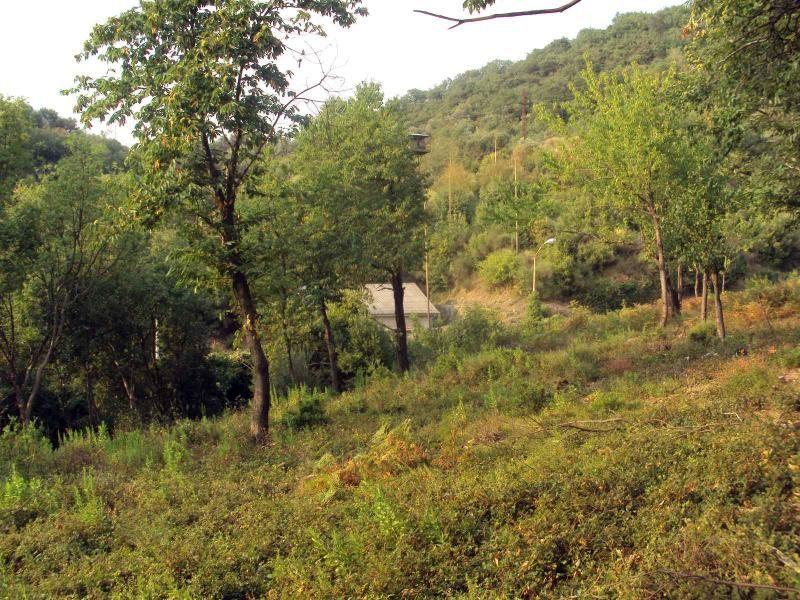 Земля в Тивате, Черногория, 3000 м2 - фото 1