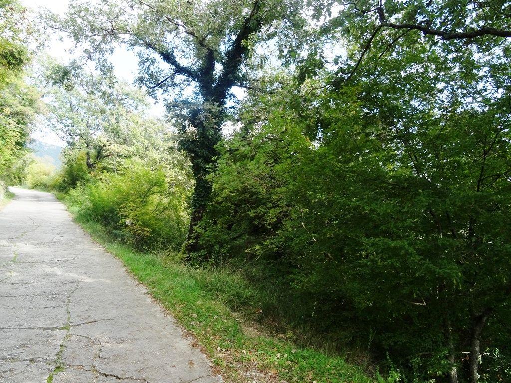Земля в Херцеге Нови, Черногория, 24585 м2 - фото 1