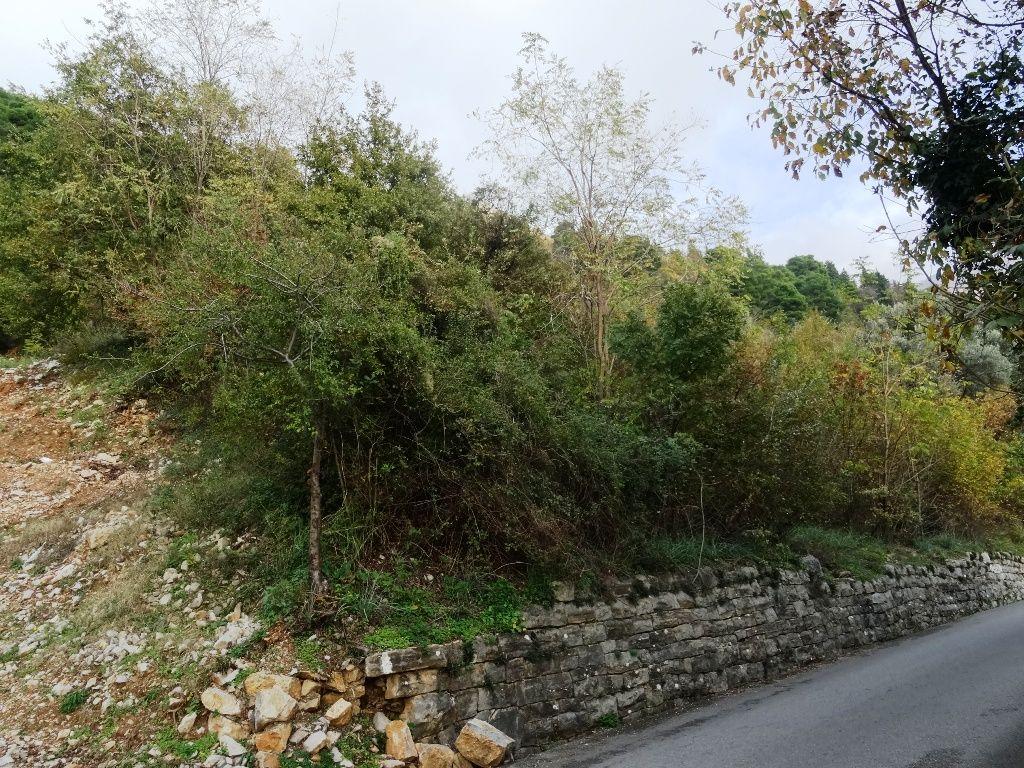 Земля в Которе, Черногория, 5954 м2 - фото 1