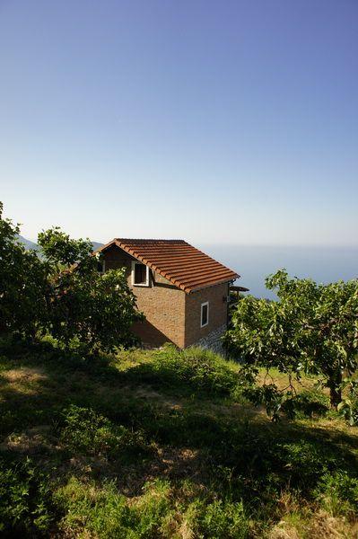 Дом в Петроваце, Черногория, 474 м2 - фото 1