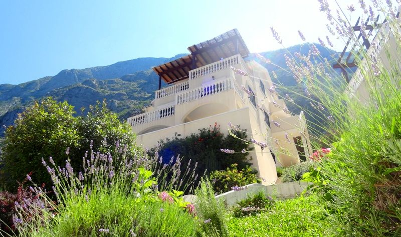 Квартира в Доброте, Черногория, 60 м2 - фото 1