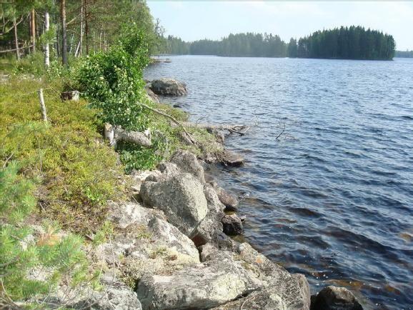 Земля в Савонранта, Финляндия, 7950 м2 - фото 4