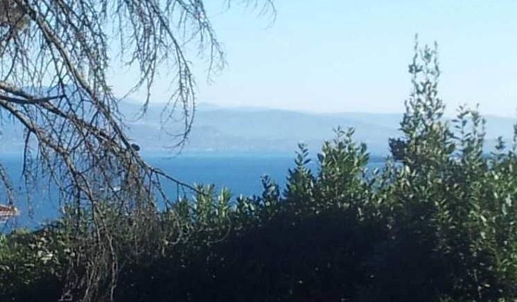 Земля у озера Гарда, Италия, 220 м2 - фото 1