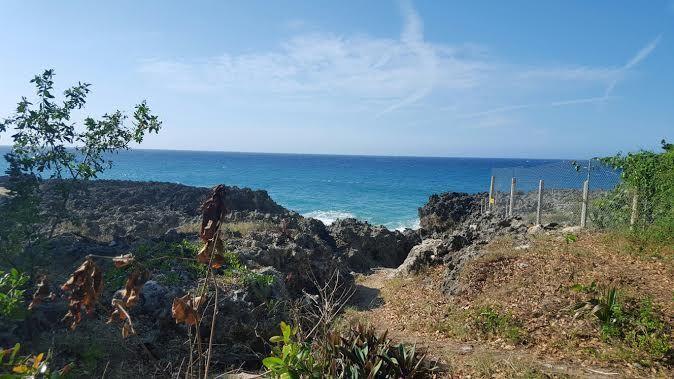 Земля в Сосуа, Доминиканская Республика, 1563 м2 - фото 1