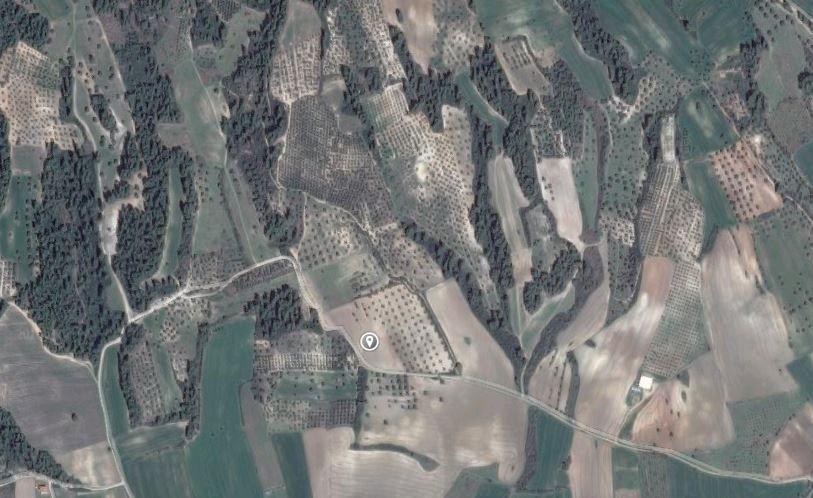 Земля на Кассандре, Греция, 14528 м2 - фото 1